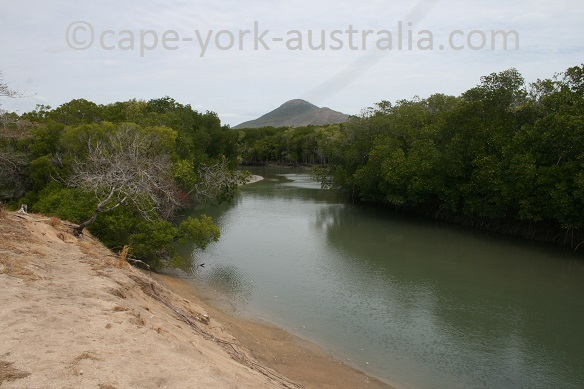 cape melville saltwater creek