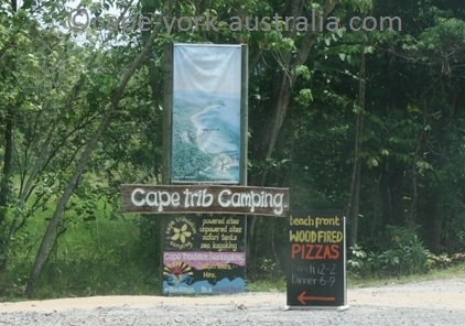 cape tribulation camping