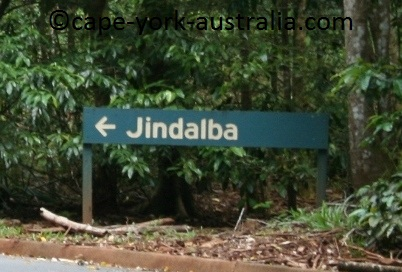cape tribulation jindalba