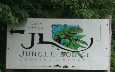 cape tribulation jungle lodge