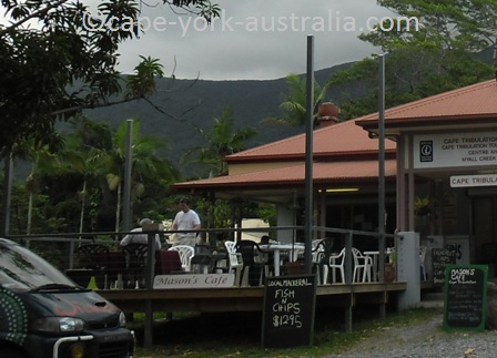 cape tribulation restaurants