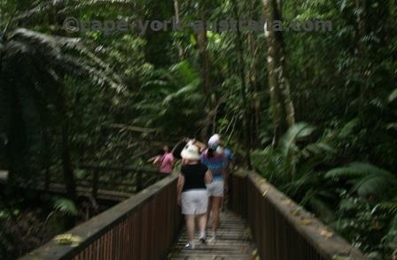 cape tribultion tour