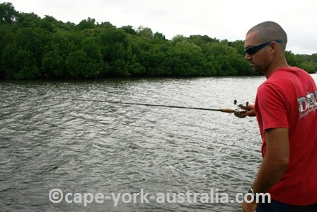 cape york activities