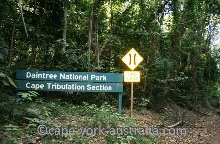 cape york national parks