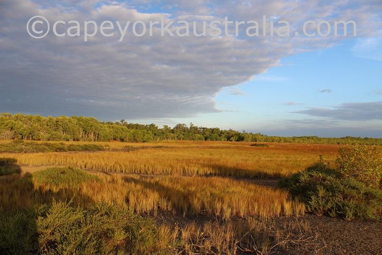 weipa wetlands