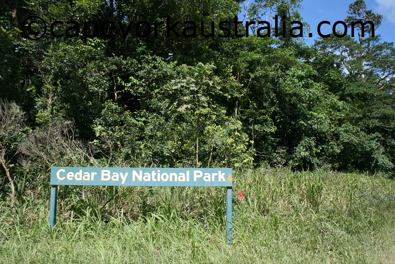 cedar bay national park