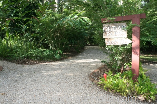 cedar park rainforest resort car park