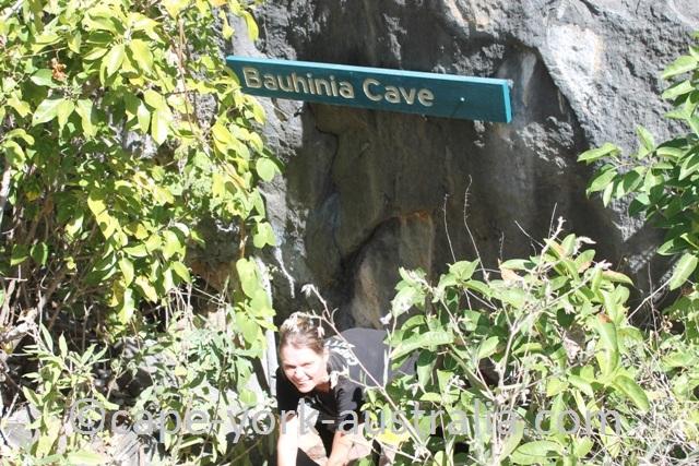 chillagoe bauhinia cave