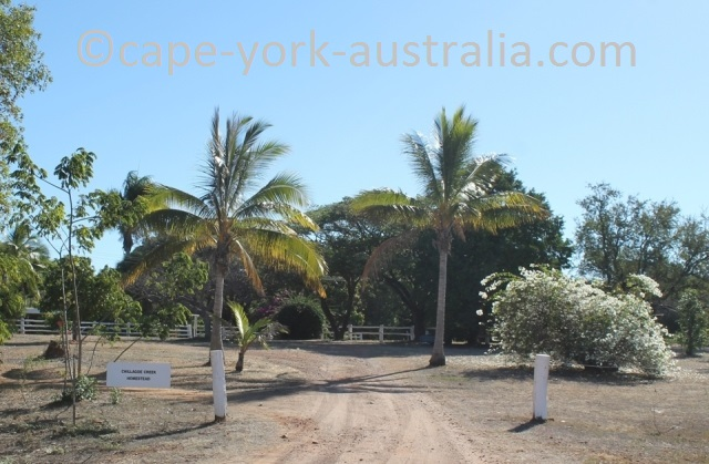 chillagoe creek homestead