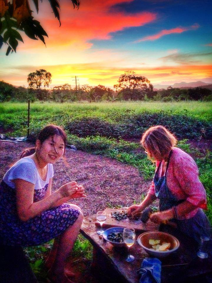cooktown farmstay