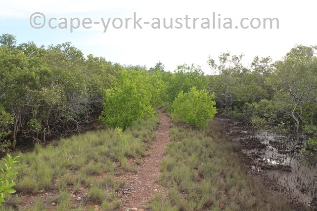 cooktown scenic rim walk adelaide st to cemetery