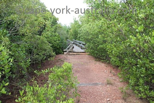 cooktown scenic rim walk creek bridges