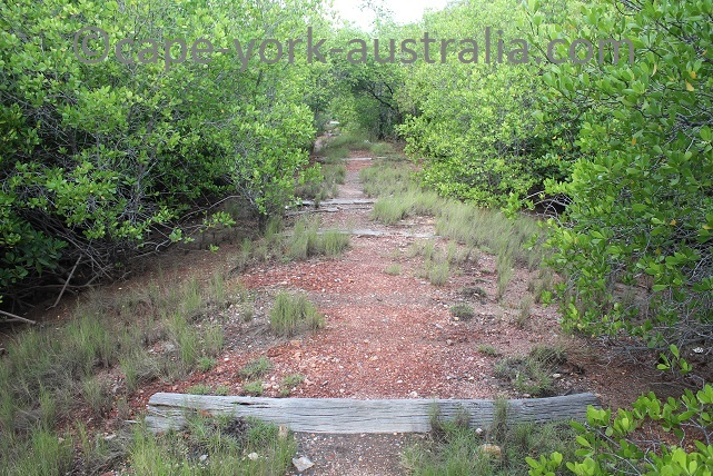 cooktown scenic rim walk railway line