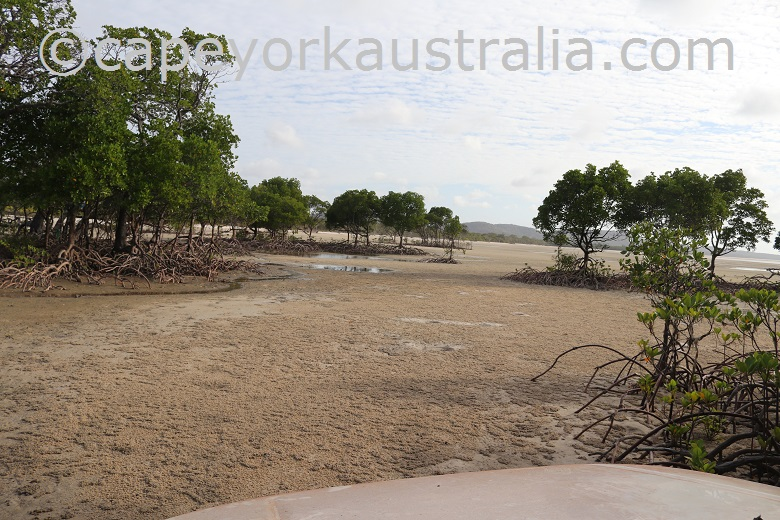 crocodile creek beach drive entrance