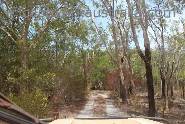 crocodile creek beach drive track