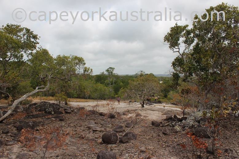 crocodile creek beach mark o'hagan