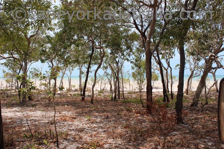 crocodile creek beach track views