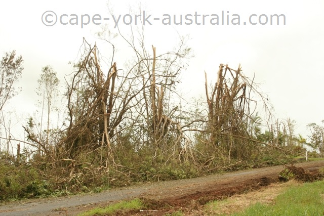 cyclone larry palmerston highway
