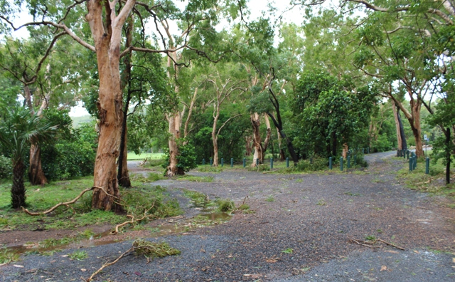 cyclone nathan cooktown