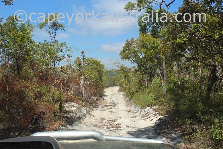 cyprus creek track