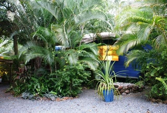 daintree escape bed and breakfast