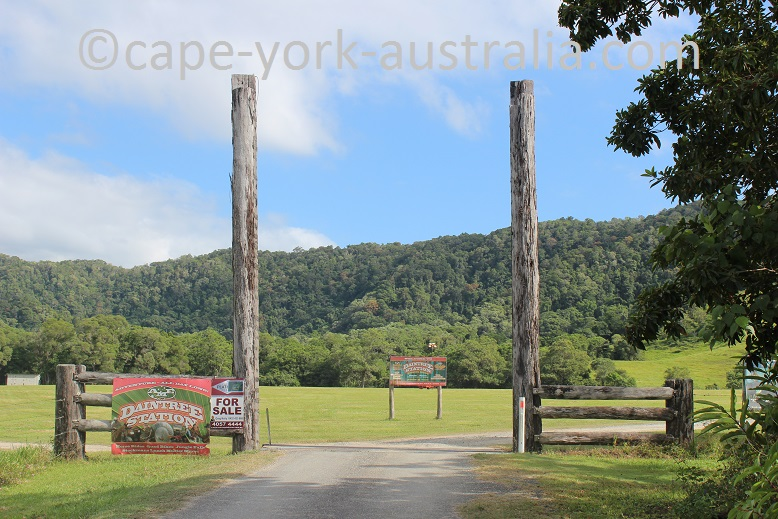 daintree station