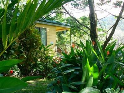 daintree valley haven bed and breakfast