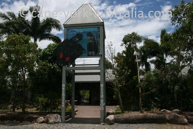 daintree zoo