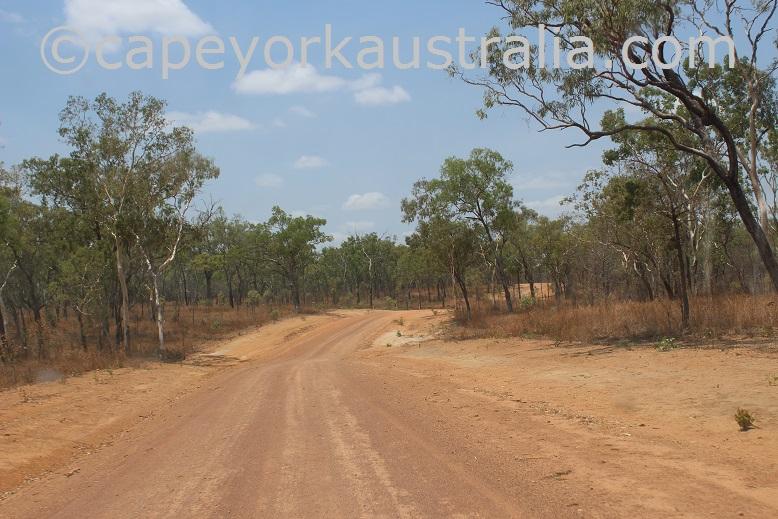 dixie koolatah road open woodland