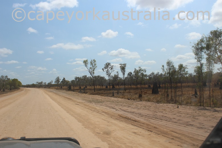 dixie koolatah road termite mounds