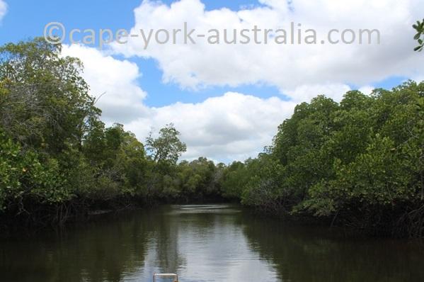 escape river fish habitat area