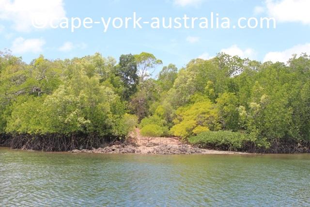 escape river kennedy