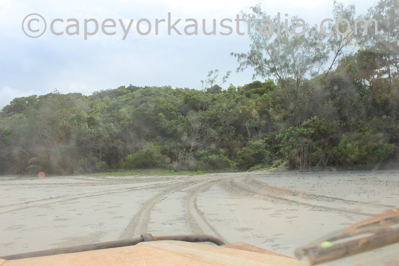 evans bay beach driving south