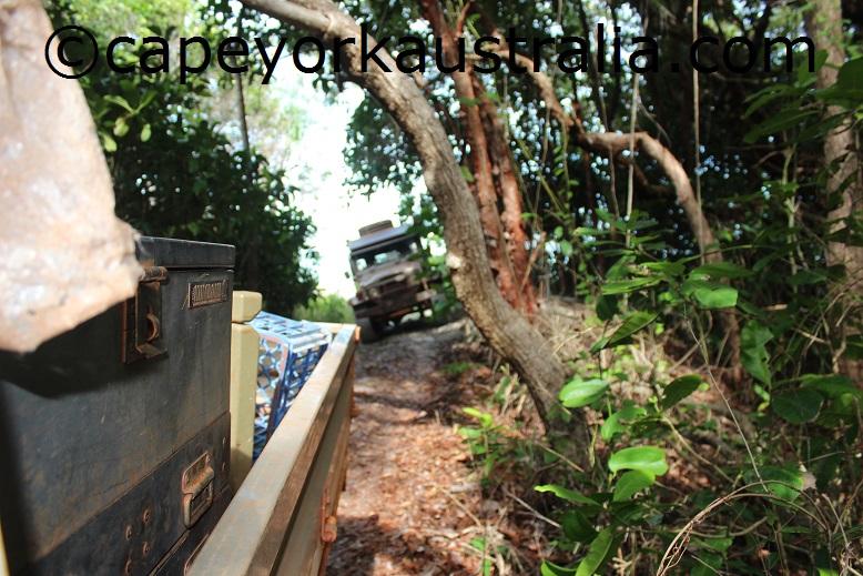 evans bay track