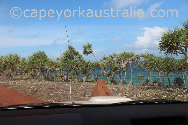 five beaches vallack point pandanus palms