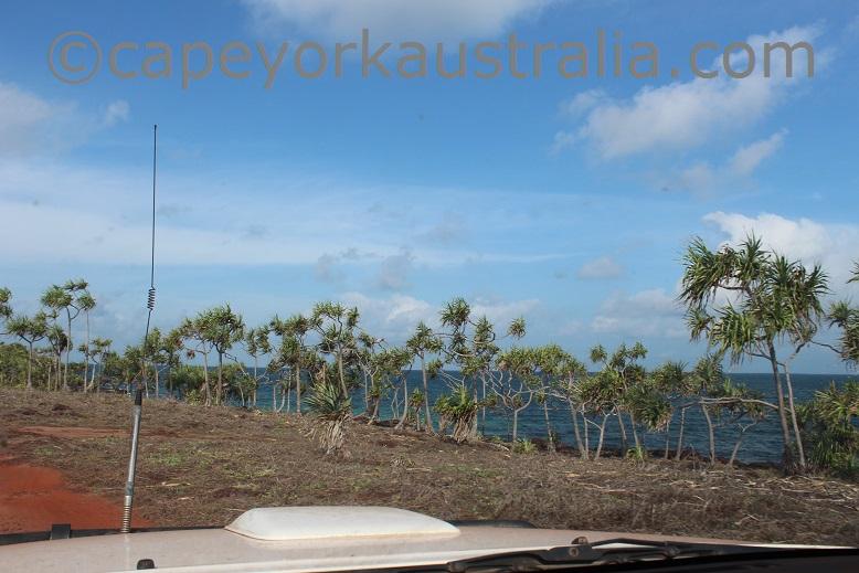 five beaches vallack point pandanus