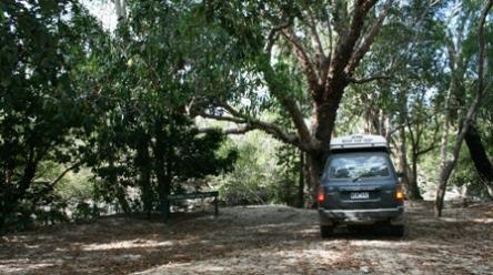 five mile creek campsite