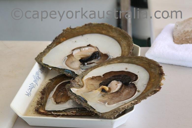friday island pearl