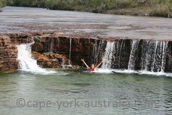 fruit bat falls swimming