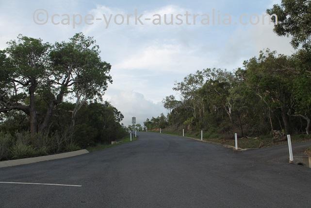 grassy hill walk kangaroo statue