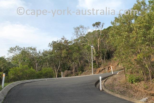grassy hill walk wasp nest pole