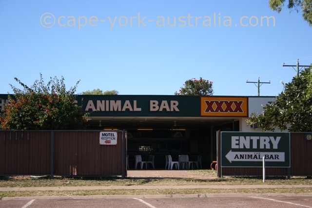 karumba animal bar