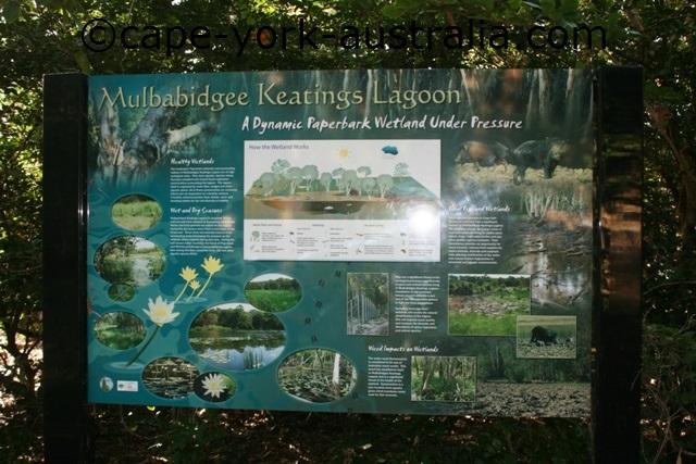 keatings lagoon birds