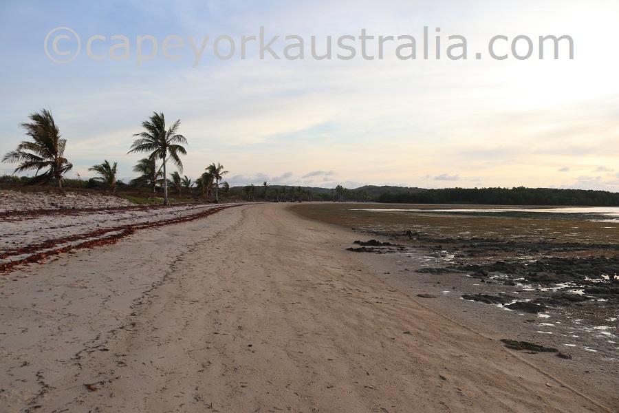 kubin beach