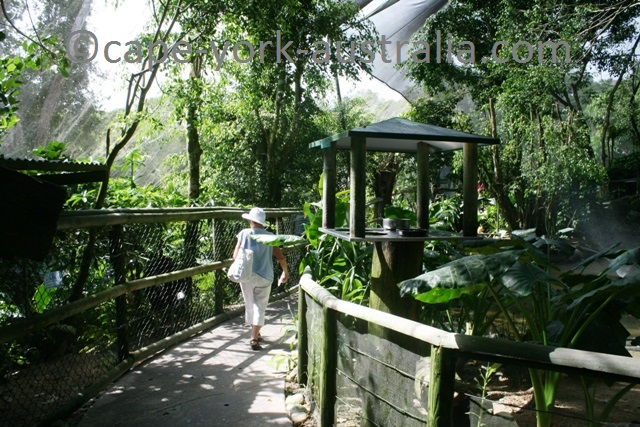kuranda birdworld walk