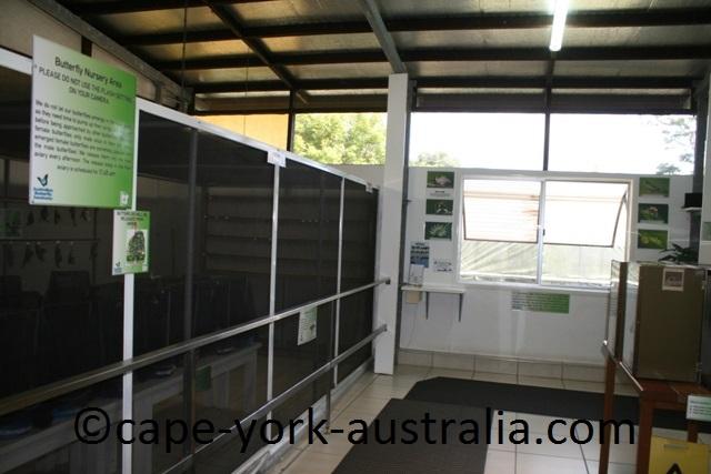 butterfly laboratory