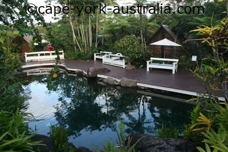 kuranda resort and spa swimming pool