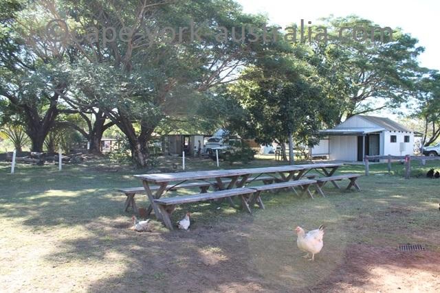 laura pub camping
