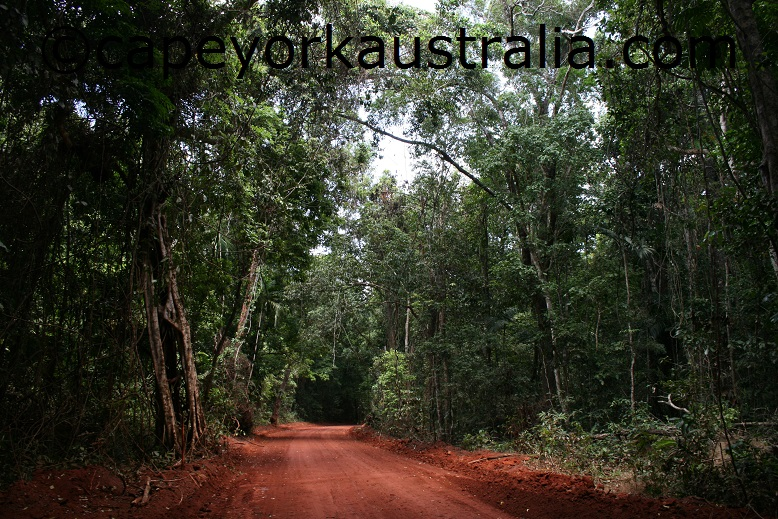 lockerbie scrub australia