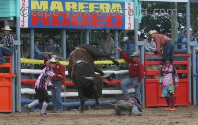 mareeba rodeo 2019